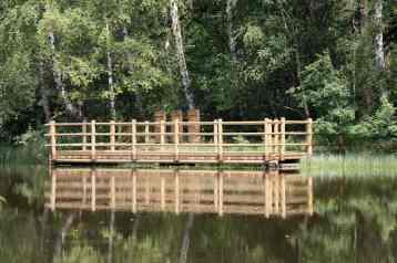 Ponton sur un étang