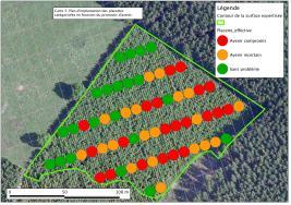 Analyse d'un réseau de placettes (dégât de cerf)